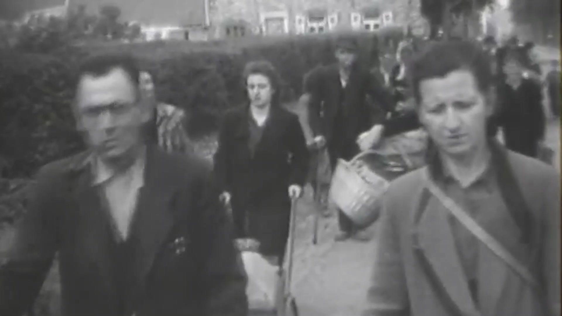 D-Day 76 Commemorative Video