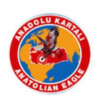 Anatolian Eagle 15