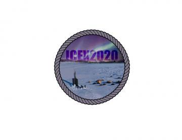 ICEX 2020