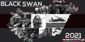 Black Swan 21