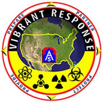 Vibrant Response 14