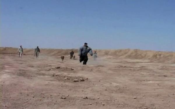Iraqi SWAT Dog Training