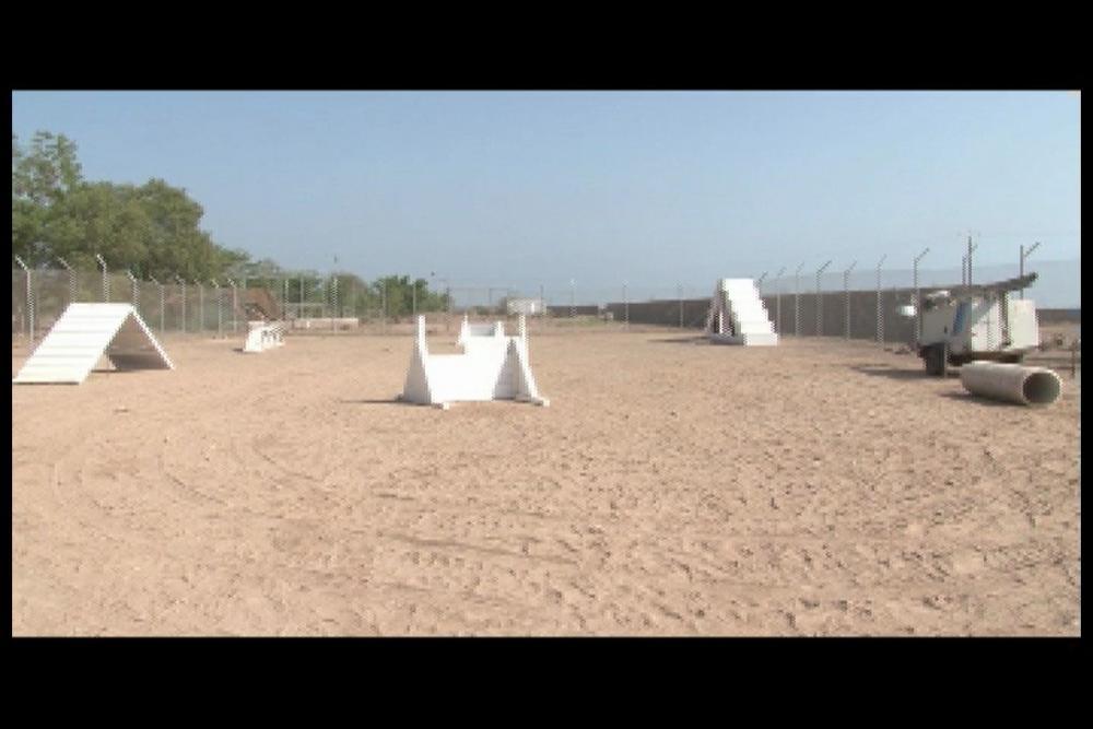 Dvids Video K9 Obstacle Course Dedication