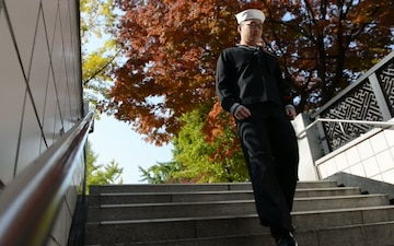 Stationed in Korea: Public Transportation