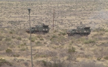 1/1 Armored Division LFX/STX