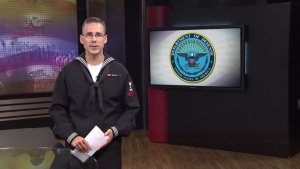 DOD News Update: Cook Briefs Press on ISIL Fight