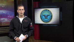 DoD News: Cook: Russian Military Support For Assad Counterproductive