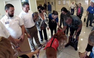 Veterans Receive Unusual Visit from Therapy Dogs