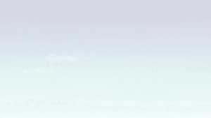 Air Force Tech Report: Air Force Prize