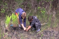 Youngsters Help Restore Ecosystem at Corps of Engineers STEM Event in Lewisville