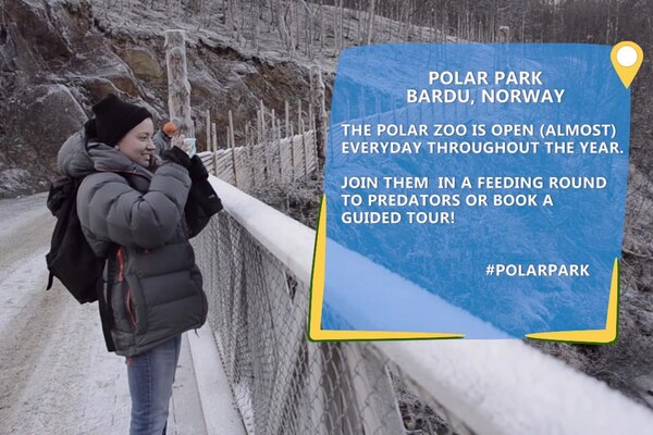 Backyard Adventure: Polar Park, Bardu, Norway