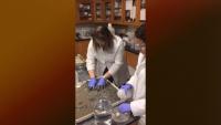 Bioaccumulation Testing - ERDC