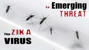 Zika Virus Awareness