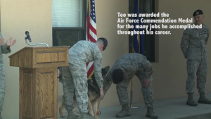 MWD Retirement
