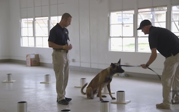CPEN Hosts ATF lead canine training