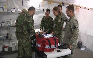 Medical professionals from U.S., Croatia, Lithuania and Portugal train together during Exercise Saber Strike 17