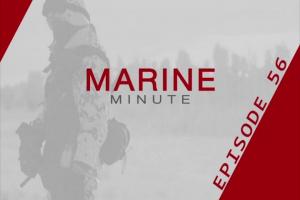 Marine Minute, August 10, 2017