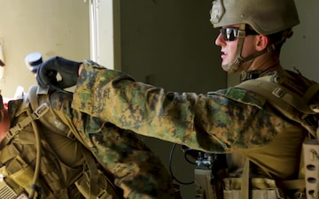 1st Air Naval Gunfire Liaison Company conducts direct action exercises B-ROLL