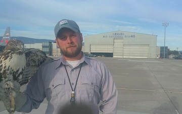 Wildlife Biologist Keeps Nevada Air Guard and Civilian Aircraft Safe from Raptors
