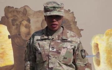 Master Sgt. Lisa Garrett - Veterans Day Shout out