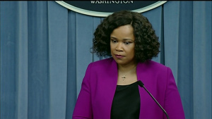 DoD Spokesperson Briefs Media