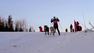Junior Mushing