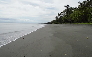 Red Beach: 1st Marine Division's Invasion of Guadalcanal