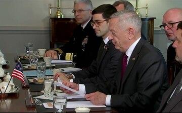 Mattis Welcomes Poland's Defense Minister to the Pentagon