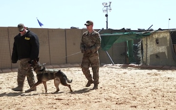 332 AEW working dog demo