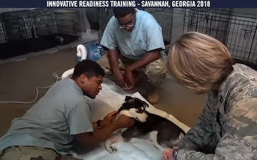 Joint military operation brings medical care to Savannah