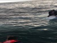 Anacapa Island Rescue