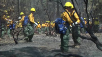 Mendocino Training Exercise