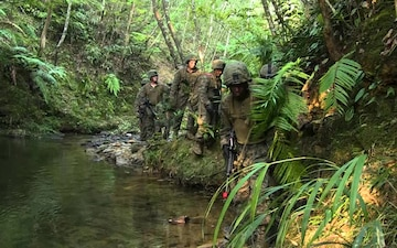 Jungle Warfare Training Center
