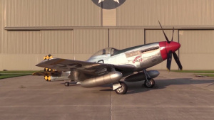 WWII Aircraft P-47 and P-51
