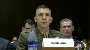 Defense Leaders Discuss Cyber Operations at Senate Hearing