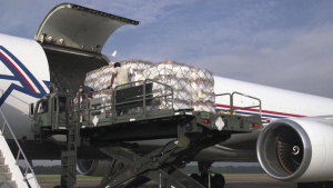 Hurricane Michael FEMA cargo offload