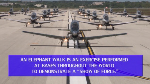 T-6A Texan II Elephant Walk