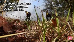 Willamette Valley prescribed burn