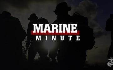 Marine Minute: Get Your Flu Shot