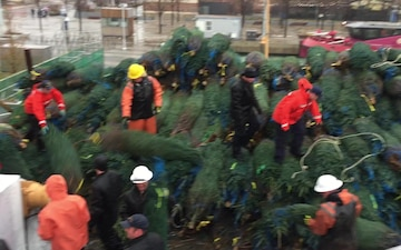 Crew of Mackinaw Offloads 1,200 Christmas Trees in Chicago