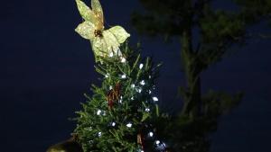 MCAS New River Tree Lighting Ceremony