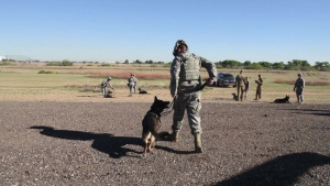 56th SFS Military Working Dog Handlers Participate in Medical Evacuation Training