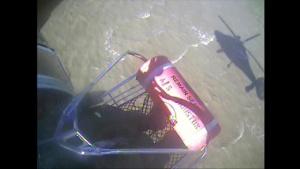 Coast Guard rescues three hunters, dog near Freeport, Texas