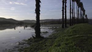 Heavy rainfall hits Camp Pendleton