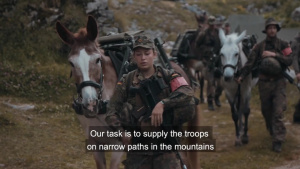 Pack Animals - the German Mountain Infantry Brigade (With Subtitles)