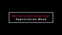 Military Working Dog Appreciation Week- Q&A