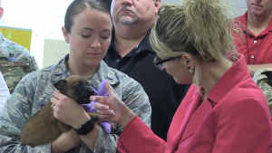 Government Working Dog Team Conference (No Lower 3rds)