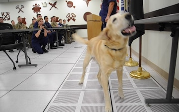 Coast Guard working dog retires after eight years of service during ceremony in Chesapeake, Va.
