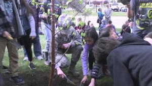 Arbor Day Celebration 2019