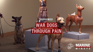 Marine Minute: War Dogs Art Exhibit